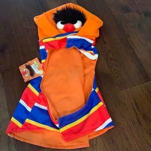 Pet hoodie Sesame Street brand  new xl